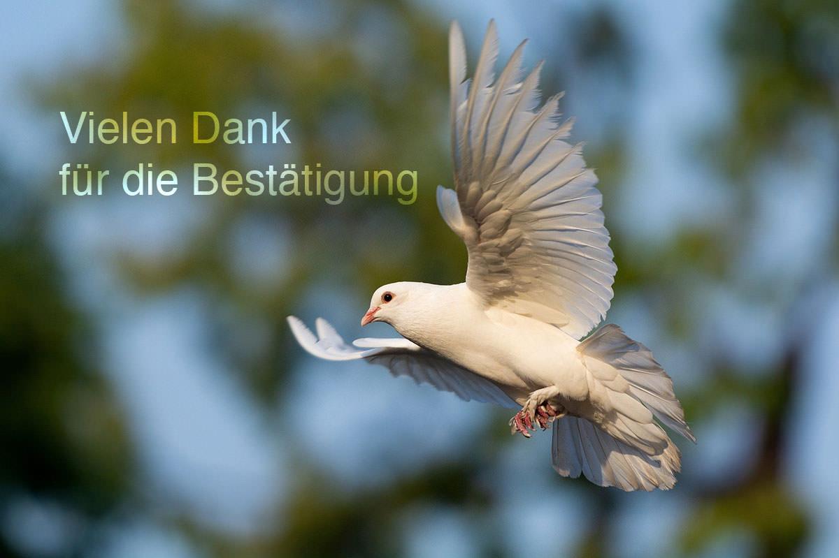 friedensbotschaften-thomas-laufmoeller-newsletter