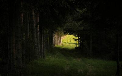 Am Ende des Tunnels ist ein Licht