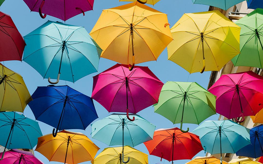 Wer unterm Schirm des Höchsten wohnt